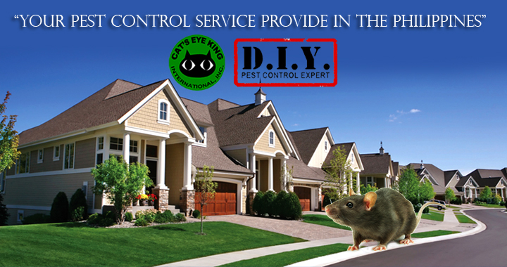 pest-control-service-provider-in-the-philippines